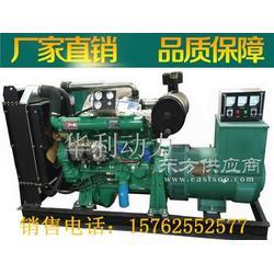 华利100kw柴油发电机组 小型家用无刷发电机 100千瓦发电机组图片