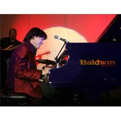 盛大顶艺(无与伦比) 雅马哈钢琴品牌-盘锦雅马哈钢琴图片