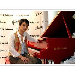 钢琴、本溪钢琴、盛大顶艺【华丽】图片