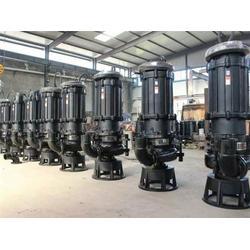 ZJQ75-35-22沼气池抽渣泵-潜水吸沙泵图片