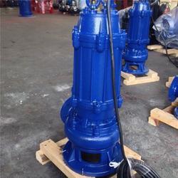 潜水污水泵、200WQ300-40-55污水排污泵图片