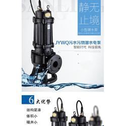污水提升泵厂家_100WQ100-35-18.5潜水排污图片