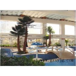 仿真棕榈树 厂家直销 室外人造棕榈树 假棕榈树景观直销 哪家好图片