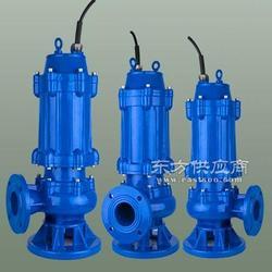 磁力泵80QW50-10-3潜水排污泵,天泉泵业图片