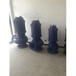 计量泵65QW37-13-3wq型潜水排污泵,抽水图片
