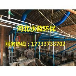 工业烟气净化设备厂家 锅炉除尘净化工程图片
