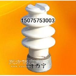 柱式陶瓷绝缘子PS-15/300图片