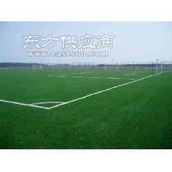 门球场人造草坪的做法图片