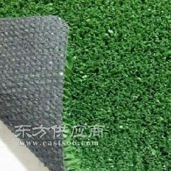标准人工草坪用什么鞋图片