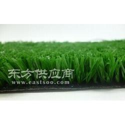 符合环保要求人造高尔夫草坪图片