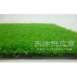 标准优质门球场人造草坪图片