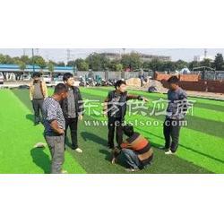【幼儿园人造草坪的品牌】哪家好图片
