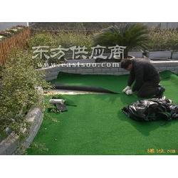 标准鞋门球场人造草坪图片