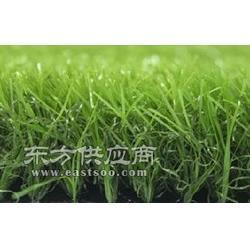 环保进口门球场人造草坪图片