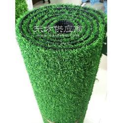 国家标准人造绿化草坪图片