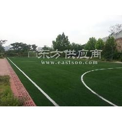 门球场施工专业人员帮您解答!博翔远人造草坪-专业做草坪十二年图片