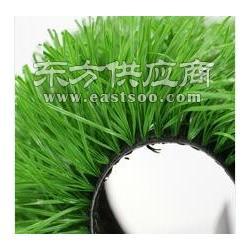 环保门球场人造草坪工具图片