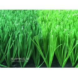 标准门球场人造草坪质量标准图片