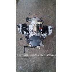 长江75024P发动机图片
