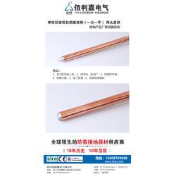 铜包钢接地棒-佰利嘉电气(在线咨询)铜包钢接地棒图片