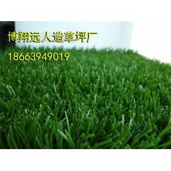 25毫米人造草坪足球场图片