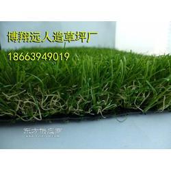 户外塑料草坪厂家图片