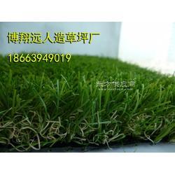 人造草坪使用年限长的品牌图片