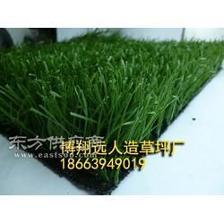 四色草仿真草坪地毯图片