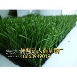人造草坪面层生产厂家图片