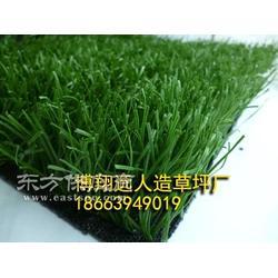 人造草坪强度图片