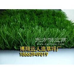 景区假草坪地毯厂家图片