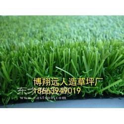 足球场人工草皮哪个厂家值得推荐图片