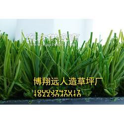 人工草坪塑料假草坪图片