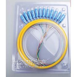 12芯束状尾纤 光纤尾纤图片