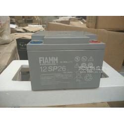非凡厂家指定代理销售12SP120储能非凡蓄电池含税销售参数图片
