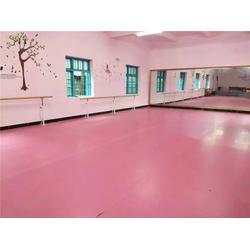 舞蹈压腿干厂家,【舞蹈室舞蹈压腿干】,舞蹈压腿干图片