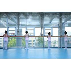 挂壁式舞蹈房把杆、永吉县舞蹈房把杆、奥成体育现货图片