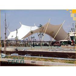 景观拉膜车棚优惠 野狼天骄(在线咨询) 台州市景观拉膜车棚图片