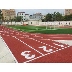 武汉塑胶跑道-恒辉体育设施(优质商家)塑胶跑道厂家图片