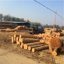 建筑方木售价|建筑方木|岚山中林木材加工厂图片