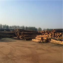 建筑方木|建筑方木公司|岚山中林木材(多图)图片