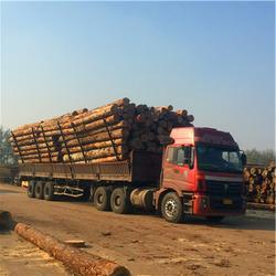 建筑方木,岚山中林木材加工厂,建筑方木售价图片
