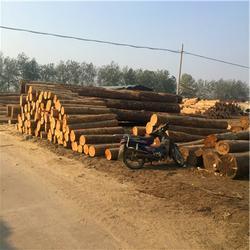 岚山中林木材加工厂(图),建筑方木厂家直销,即墨建筑方木图片