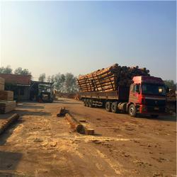 枣庄辐射松建筑方木|中林木业|辐射松建筑方木多少钱图片