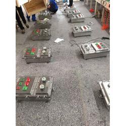 粉尘防爆箱尺寸|平安防爆(在线咨询)|粉尘防爆箱图片