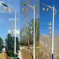 海螺臂A字臂路灯灯杆、希科节能(在线咨询)、路灯灯杆图片