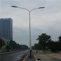 8米路灯-希科节能(在线咨询)路灯图片