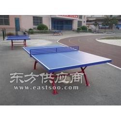 室内外乒乓球台专业生产厂家图片