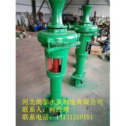 泥浆泵PN卧式泥浆泵PNL立式泥浆泵图片