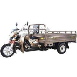 大运150水冷三轮摩托车图片
